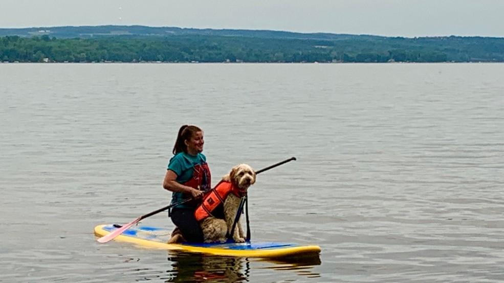 """Auburn boat club offering """"doggy paddles"""" for pooches"""