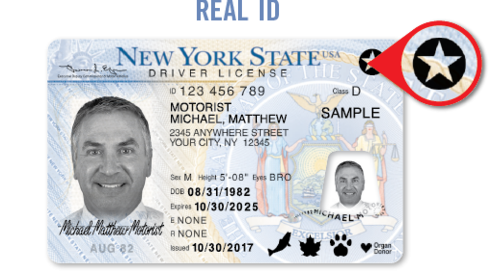 Image result for new york real id