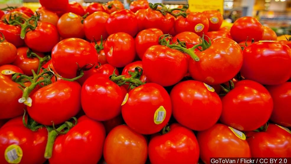 Tomato Fest set to begin in Auburn